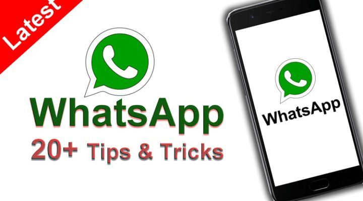 25+ WhatsApp Tricks and Important Secrets You should Know